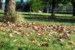 začíná podzim