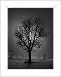 Půlnoční obraz