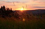 Západ v trávě