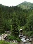 V Jamnické dolině