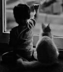 Malí přátelé...