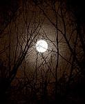 Měsíční pavučina