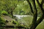 řeka Odra