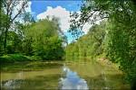 rameno řeky  Odry