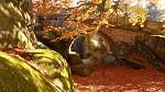 Podzimní přírodou....