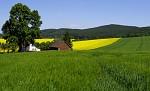 Jarní krajinka