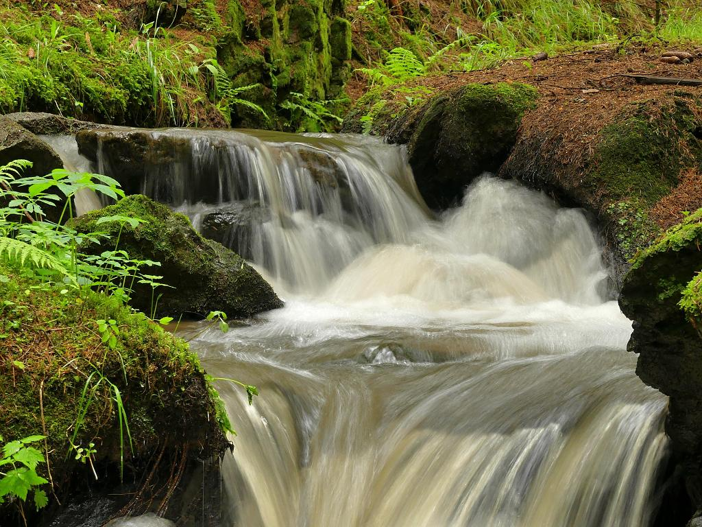 Petrovický potok