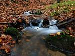 Jalovčí potok