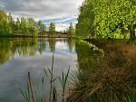 Rybník od aragonn