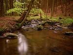 Jankovský potok