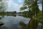 Ředkovský rybník