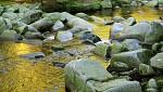 Řeka zlata
