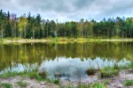Lesní nádrž Češík