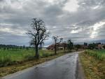 Cestou do Chvaliny