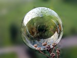 Věštecká koule