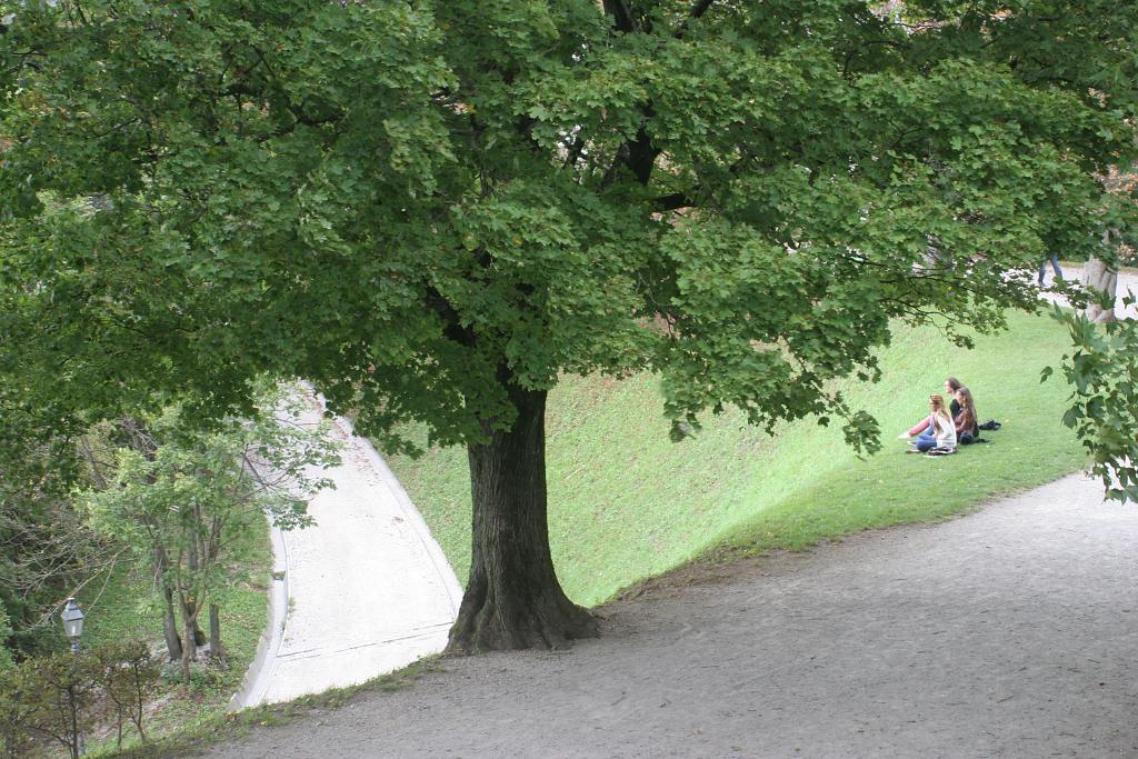 Čtyřlístek v Lublani
