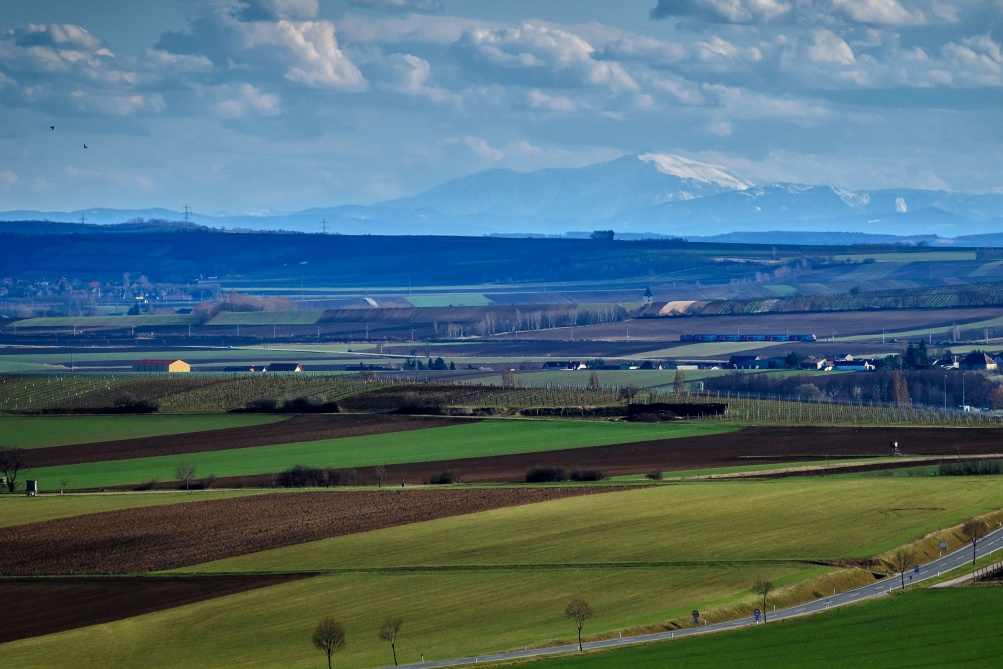Pohled na Alpy z Moravy