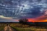 Divoká obloha