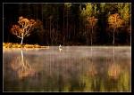 Podzimní ráno u jezera II