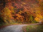 Jesenná poézia