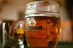 pivo ...