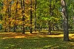 podzim je tu....