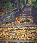 podzimní schody 1