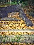 schody3 - Planá