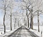 Zimní cestovní foto