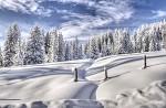 Zasněžená krajinka
