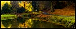 Podzim v Pruhonickem parku.