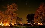 Večer v parku
