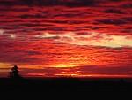 Červené nebo