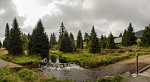 Hamerský potok nedaleko Horské Kvildy