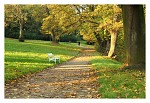 Podzim v parku - I