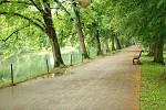 Cesta v parku