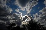 vtacik na oblohe