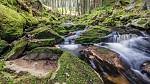 Pohorský potok