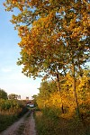 Podzim v Lednici