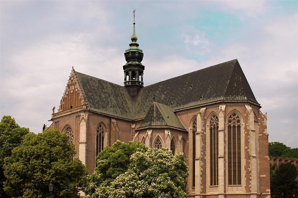 Bazilika Nanebevzetí Panny Marie Brno