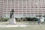 Koželuh - socha