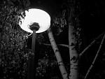 Pátá hodina odbyla, lampa už zase svítila...