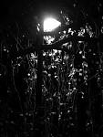 Když padá světlo