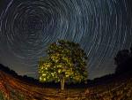 Večer pod hviezdami