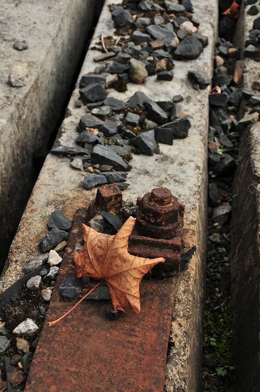 Podzim na cestě