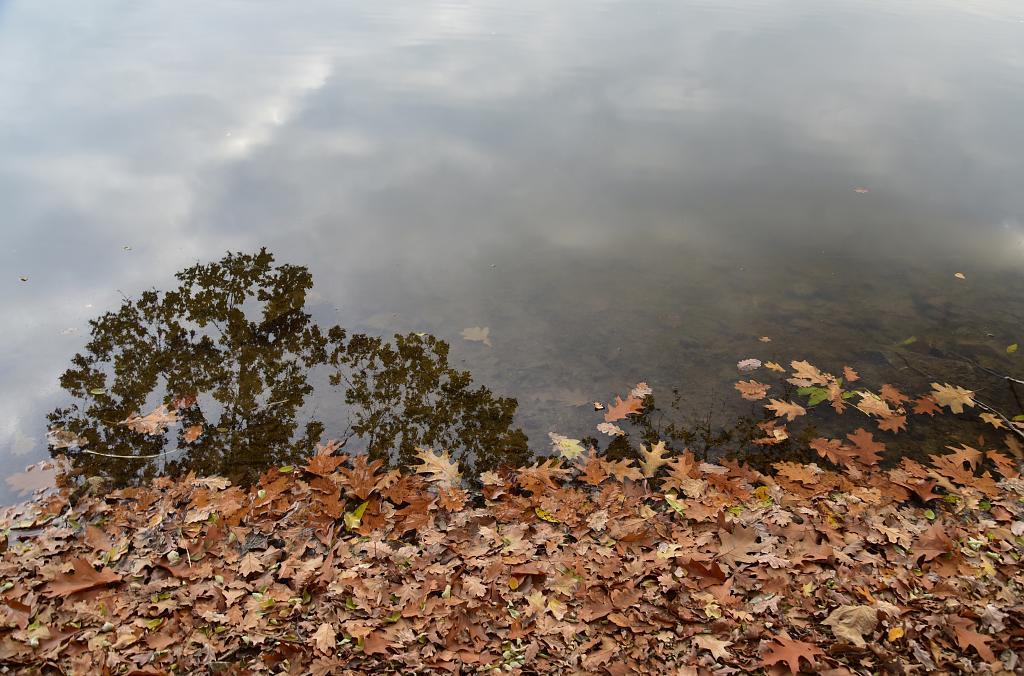 Podzim ve vodě