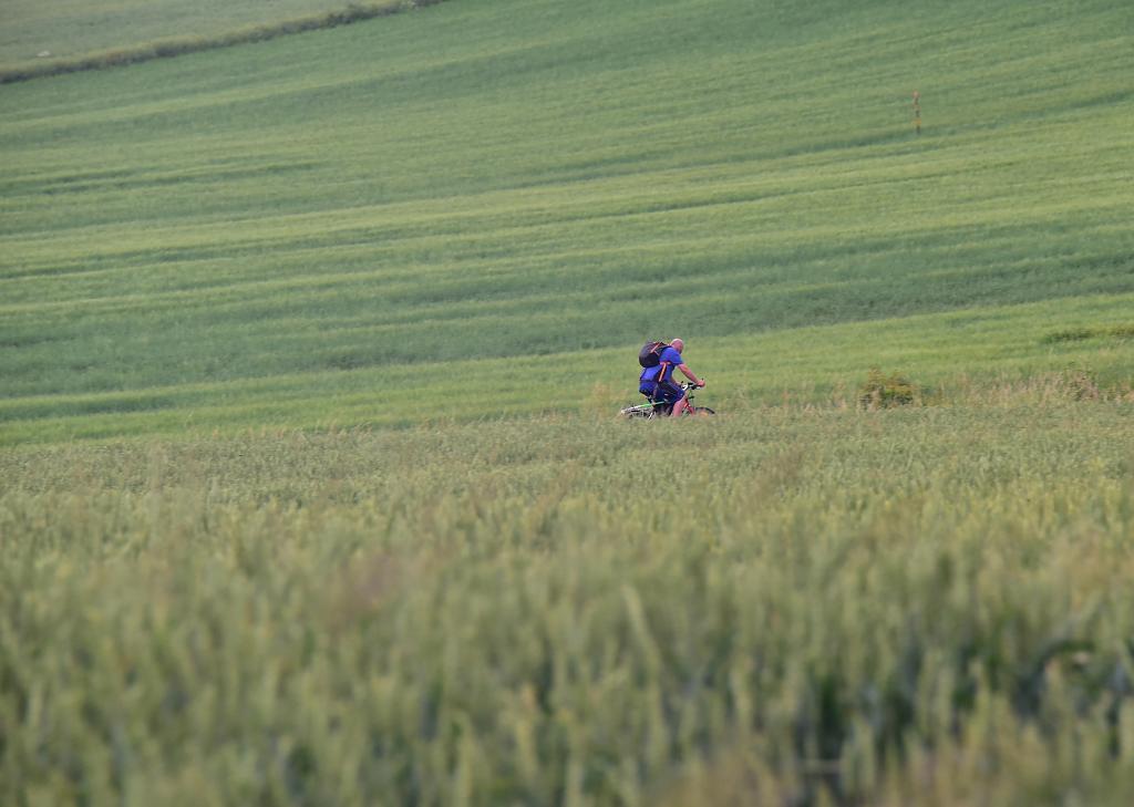 Dobře skrytý cyklista