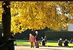 Podzim života