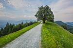 Slovinská krajina II.
