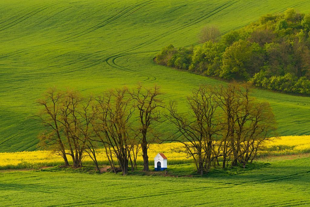 Moravská krajina II.